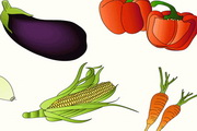果蔬集合矢量素材