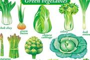 精致绿色蔬菜矢量图