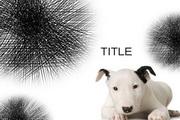 可爱小狗PPT模板...