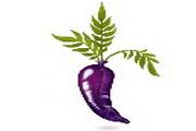 茄子创意桌面图标下载