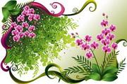花卉花纹素材27