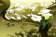 花卉花纹素材37