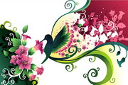 花卉花纹素材39