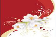 白色花朵与心形素材