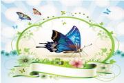矢量蝴蝶鲜花装饰框