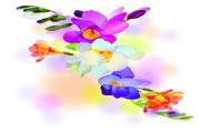 春季装饰花卉矢量设计素材