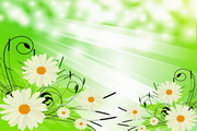 矢量精美绿色花卉