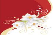 白色花朵与心形花纹矢量图