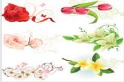 矢量精美艳丽花卉