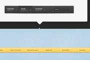 网站栏目导航菜单设计psd素材