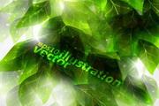 春季朦胧透光绿叶矢量素材