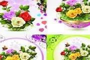 6款精美玫瑰花矢量图素材