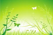 绿草花纹矢量图