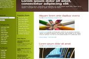 锌绿色div css网页模板