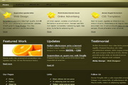 div css网页设计模板