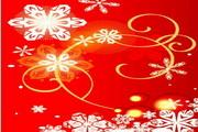 时尚冬季花纹背景素材14
