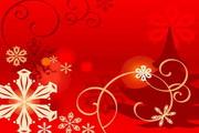 时尚冬季花纹背景素材19
