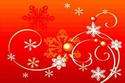 时尚冬季花纹背景素材20