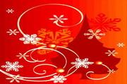 时尚冬季花纹背景素材21