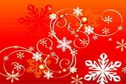 时尚冬季花纹背景素材22