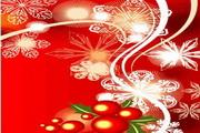 时尚冬季花纹背景素材23