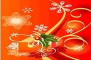 时尚冬季花纹背景素材24