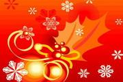 时尚冬季花纹背景素材26