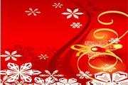 时尚冬季花纹背景素材27