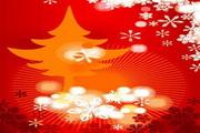 时尚冬季花纹背景素材30