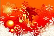 时尚冬季花纹背景素材44