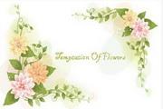 植物装饰边框素材8