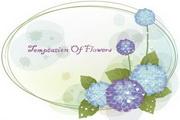 植物装饰边框素材20