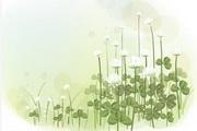 植物装饰边框素材21