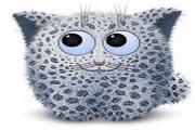 可爱雪豹电脑图...