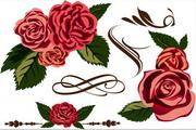 彩绘花卉矢量素材