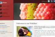 红色经典纯CSS网...