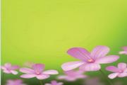 可爱花草植物矢量图