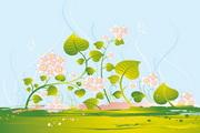 精美植物花藤矢量图