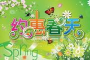 约惠春天春节炫彩海报psd素材
