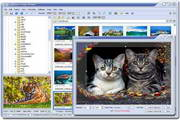 FastStone Image Viewer 5.7