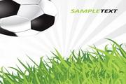 足球体育运动矢量图
