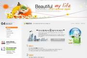 韩国唯美生活网站PSD素材