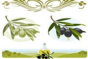 咖啡与橄榄矢量素材