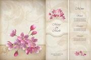 婚礼装饰花卉卡片矢量