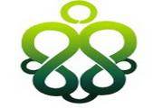 绿色花纹桌面图标下载2