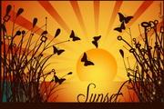 日落下蝴蝶矢量图