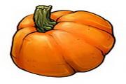 水果蔬菜电脑图...