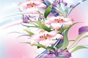 百合花卉矢量素材