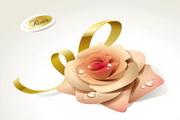 矢量精美玫瑰花图
