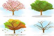 矢量植物树木素材